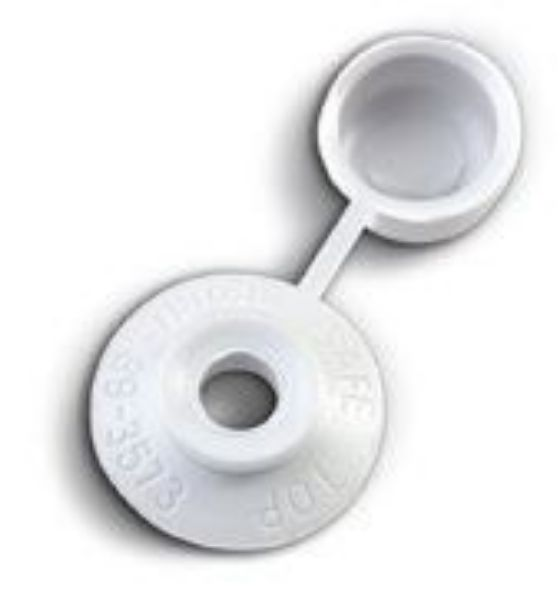 Picture of SAFE TOP  65MM SCREW ROOF FROST WHITE