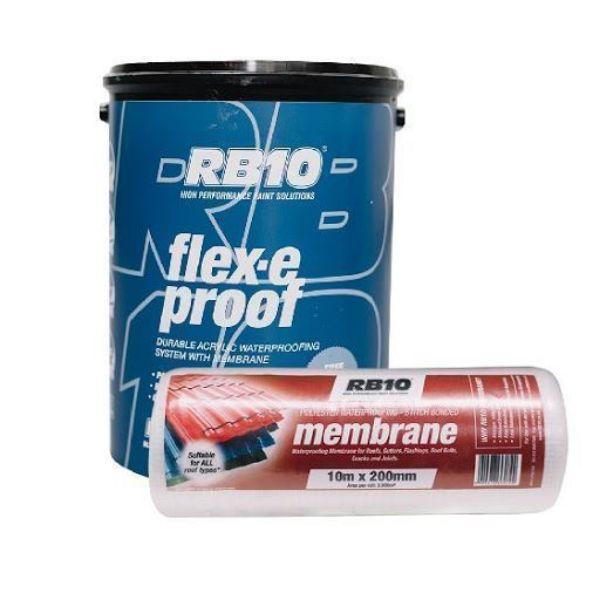 RB10 FLEX-E PROOF WHITE + MEMBRANE + BRUSH SOUTH AFRICA