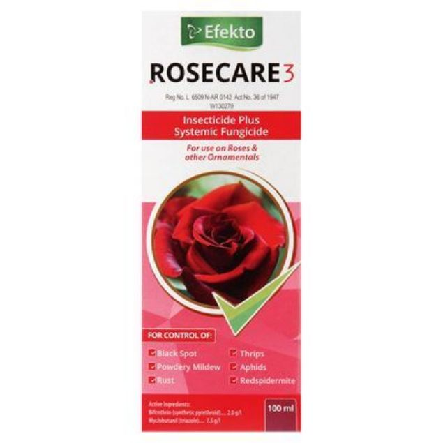 EFEKTO ROSECARE 3 100ML south africa