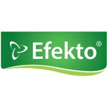 Picture for manufacturer EFEKTO