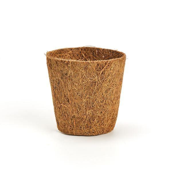 Fibre Pots — 6cm Round (12 pack) SOUTH AFRICA